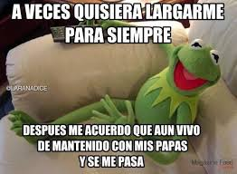 Imagenes Groseras Rana Rene | la rana rene on quiero grosero y memes