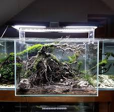 Aquascape Design 930 Best Aquarium Fish Tank Aquascape Aquascaping Images On