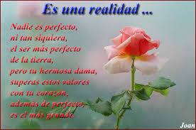 bonitas de rosas rojas con frases de amor imagenes de amor facebook hermosa rosa con frases de amor imagenes de rosas