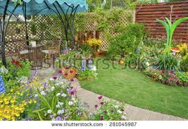 backyard garden stock images royalty free images u0026 vectors