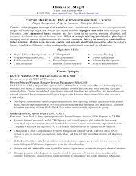 sle executive resume security executive resumes resumes free resume