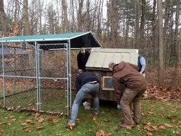 when thanksgiving started thanksgiving chicken coop pilgrimage