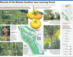Botanic Gardens by Botanic Gardens Grows And Gets A Forest To Call Its Own Singapore