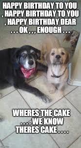 Happy Birthday Cake Meme - wheres the cake imgflip