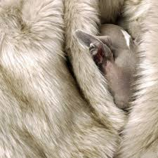 Faux Fur Blankets And Throws Faux Fur Dog Blanket In Oatmeal Dog Towels Blankets U0026 Dry Dog