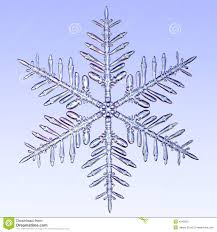 microscopic snowflake royalty free stock images image 4245029