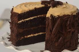 chocolate peanut butter cake joyofbaking com video recipe