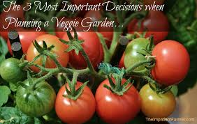 planning your backyard vegetable garden