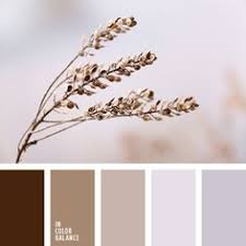 Color Beige Color Palette 2883 Color Palette Ideas Light Pink Color