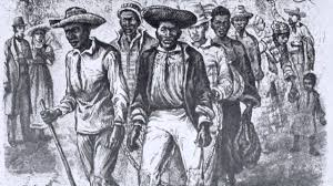 occupy the cinema with the birth of a nation nat turner lives