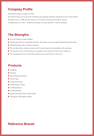 professional profile template professional profile resume