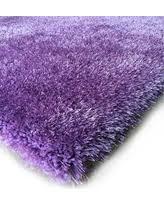 Purple Shag Area Rugs by Purple Area Rugs Bhg Com Shop