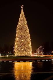 san francisco tree lighting 2017 bishop ranch tree lighting san ramon 150