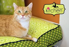 Cat Bed Pattern Free Pattern Features Cats Craft Buds