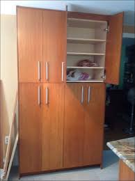 Pantry Cabinet Doors by Kitchen Cabinet Kitchen Cabinets Liquidators Lowes Contemporary