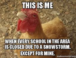 Snowstorm Meme - chicken meme snow storm by princessskyler on deviantart