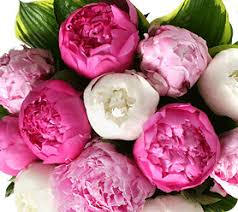 common wedding flowers top 5 most popular wedding flowers bloomerent