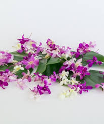 blooms flowers orchid blooms fresh hawaiian orchids