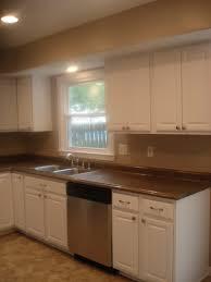 modern kitchen companies kitchen modern kitchen cabinets kitchen remodel pictures custom