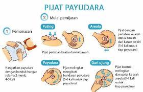 Minyak Bulus Asli Papua minyak bulus asli papua pembesar payudara yang aman