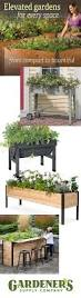 27 best gardening in small spaces images on pinterest small