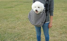 urban dog ring holder images When you are on the go here are 7 dog sling carriers to put your jpg