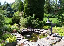 Pond Landscaping Ideas Small Pond Landscaping Ideas Pool Design Ideas