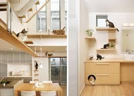 pet friendly house plans lake house plans pet purrrfect the ultimate cat friendly interior