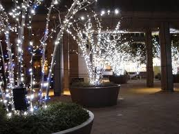 Outdoor Christmas Decor Battery by 60 Best Outdoor Lights Christmas Lights Images On Pinterest