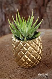 doodlecraft pineapple succulent planter