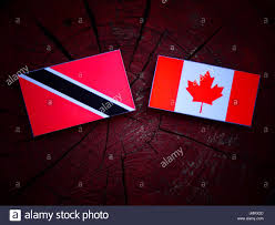 Flag For Trinidad And Tobago Trinidad And Tobago Flag With Canadian Flag On A Tree Stump