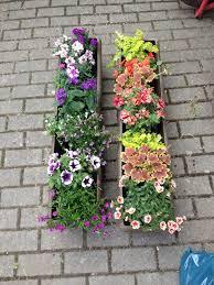 balkon grã npflanzen beet und balkonpflanzen blumen baldewein