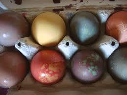 easter egg dyes family easter egg dyes edible island