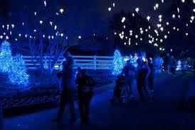 best light displays tree lightings events in