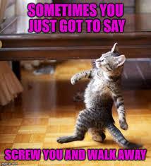 Like A Boss Meme - cat walking like a boss memes imgflip