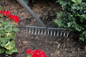 6 crucial gardening tools you should need
