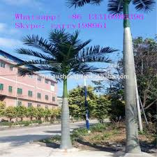 outdoor palm tree l royal palm tree royal palm tree suppliers and manufacturers at