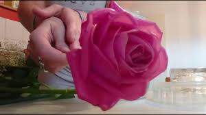 preserving roses in wax youtube