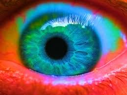 The Blind Spot In The Eye Is Due To Apparently Vigorous Can Burst A Blood Vessel In Your Eye