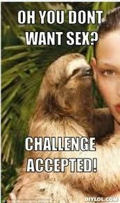 Dirty Sloth Meme - sloth memes too funny just for laughs pinterest sloth