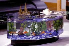 Aquarium Coffee Table 5 Unique Coffee Tables For The Pet Lover Shade Grown And Fresh