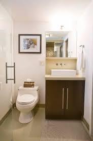 Basement Bathroom Ideas Designs Small Modern Basement Bathroom Ideas With Vanity And Walk In Tub