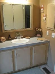 Top Of Kitchen Cabinets Interior Design 21 Ikea Kitchen Cabinets In Bathroom Interior