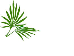 palm for palm sunday palm sunday clip at clker vector clip online