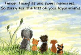 pet bereavement sorry for loss of your dog pets pet loss dog and
