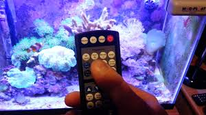 current usa orbit marine aquarium led light current usa orbit marine led system review youtube
