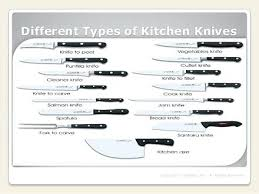 uses of kitchen knives types of kitchen knives vector illustration of types of kitchen