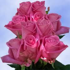 global roses best flowers deals lavender roses free flower delivery