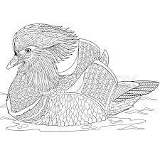 a monochrome sketch of a duck stock vector colourbox