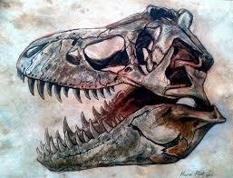 dinosaur skull tyrannosaurus 2 by watjong junior cert and